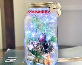 Christmas Scenary Light Up Mason Jar