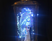 Wedding decor centerpiece lighted lantern romantic bride and groom cake topper display table decor personalized